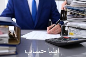 حسابرسی 8